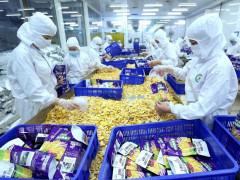 Việt Nam có nhiều mặt hàng lợi thế xuất khẩu sang Romania