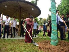 Chủ tịch QH Nguyễn Thị Kim Ngân dâng hương và trồng cây lưu niệm tại Khu di tích lịch sử Đền Hùng