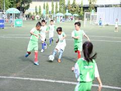 118 đội tham dự vòng chung kết Festival bóng đá học đường TP Hồ Chí Minh năm học 2018 – 2019