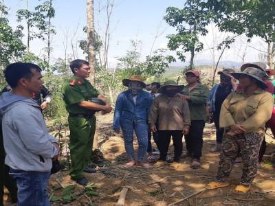 Vụ chặt phá cây của doanh nghiệp để xin cấp đất ở Đắk Lắk: Khởi tố năm vụ án