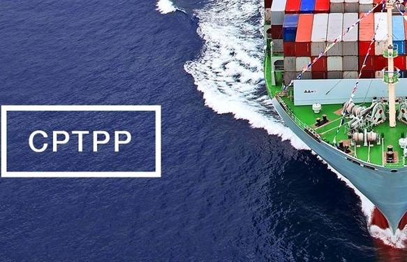 Hướng dẫn C/O áp dụng thuế suất ưu đãi đặc biệt trong Hiệp định CPTPP