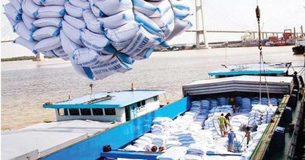 Vì sao xuất khẩu gạo Việt Nam sang Trung Quốc sụt giảm mạnh?