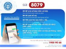 Tổng đài 8079: tra cứu thông tin về BHXH