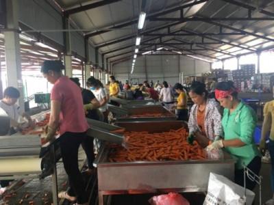 Thanh Hóa: Thành lập mới 928 doanh nghiệp