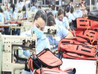 Hàng Việt Nam xuất sang châu Âu sắp được bỏ thuế: Cơ hội cho nhiều doanh nghiệp!