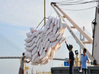 Xuất khẩu gạo 6 tháng cuối năm tiếp tục gặp khó khăn