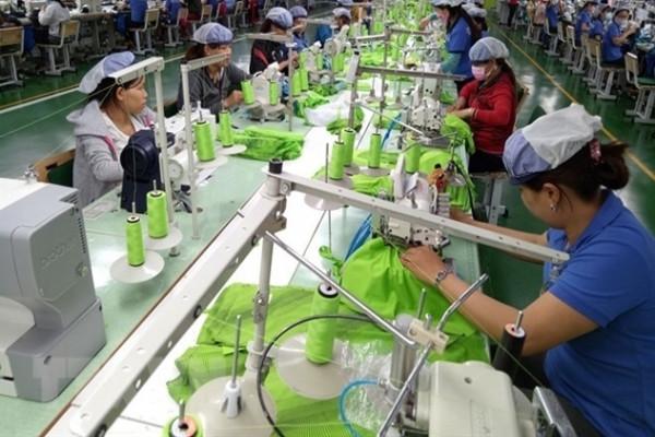 Tác động của hiệp định EVFTA đến các ngành sản xuất tại Việt Nam