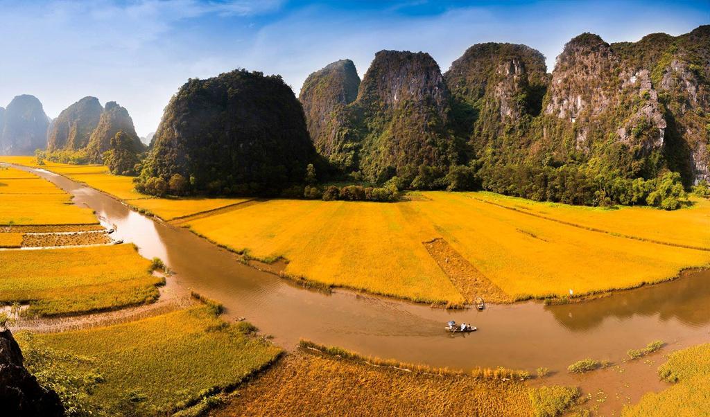 Chiêm ngưỡng vẻ đẹp Việt Nam tuyệt đẹp mùa lúa chín