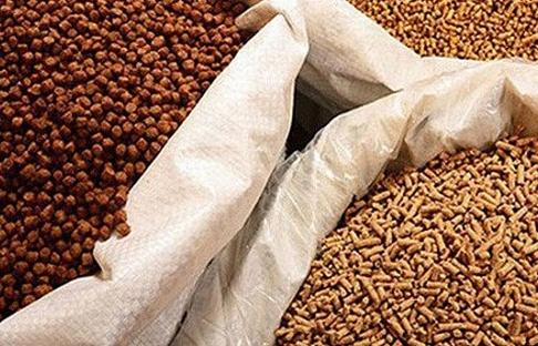 6 tháng 2019: Việt Nam chi 1,894 tỷ USD nhập khẩu thức ăn chăn nuôi