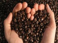 Đứng top 2 thế giới, cà phê -  thế mạnh Việt Nam gặp cú sụt mạnh