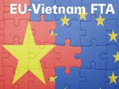 """Ngẫm về chuyện """"Vượt Vũ môn"""" EVFTA, EVIPA của Việt Nam"""