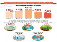 Infographic: Thấy gì từ tăng trưởng tín dụng 6 tháng đầu năm 2019?