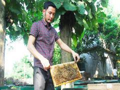Khởi nghiệp với số vốn 100 đàn ong mật