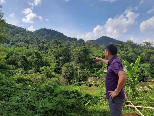 Doanh nghiệp nhận đất rừng rồi bỏ hoang