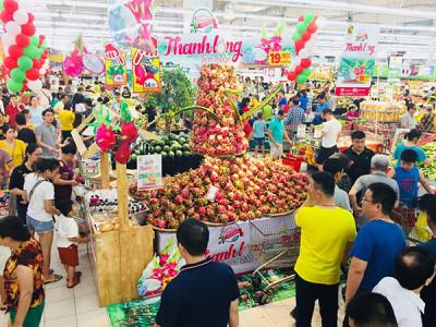 Central Group Việt Nam tiêu thụ 500 tấn thanh long Bình Thuận