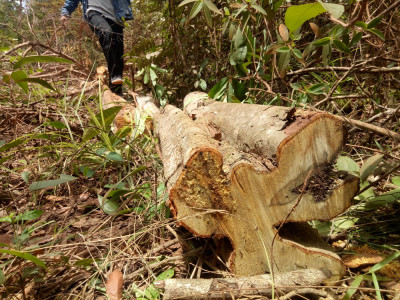 Tây Ninh: Bức xúc vì doanh nghiệp