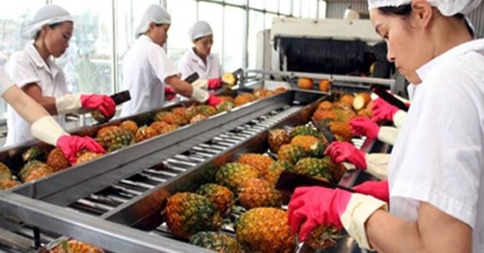 Bị siết điều kiện nhập khẩu, nông sản Việt Nam xuất sang Trung Quốc giảm nhanh