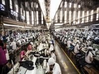 Năng suất lao động: Nông nghiệp chưa bằng 1/10 Malaysia, nửa Thái Lan, công nghiệp dịch vụ chưa xứng