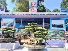 Sầm Sơn in dấu chân Bác Hồ