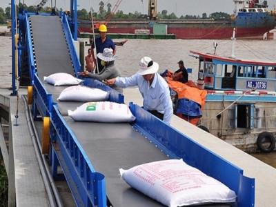 Tìm đường mới cho xuất khẩu gạo