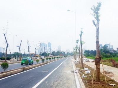 Giá đất tăng nhờ hạ tầng kết nối
