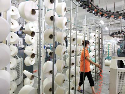 Lơ mơ, doanh nghiệp Việt liên tiếp dính kiện