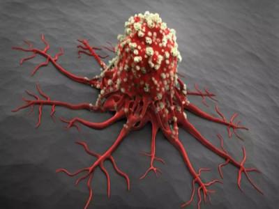 Ai cũng sợ mắc ung thư nhưng tế bào ung thư lại rất