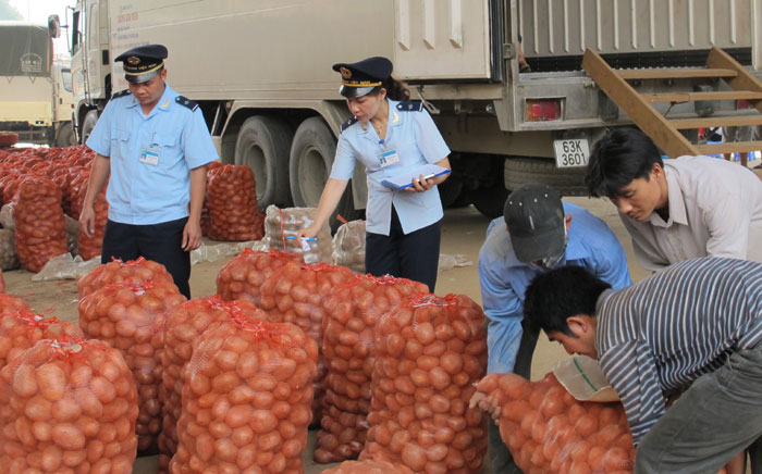 Xuất khẩu nông sản sang Trung Quốc: Muốn bền vững phải thay đổi