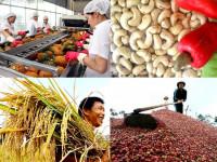 Căng thẳng thương mại Mỹ - Trung leo thang: Xuất khẩu Việt Nam sẽ gặp khó khăn