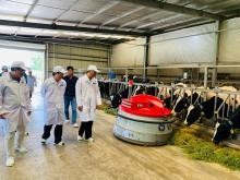 Vinamilk tham gia xây dựng vùng chăn nuôi bò sữa an toàn dịch bệnh