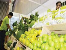 Khó tăng mạnh xuất khẩu trong ngắn hạn