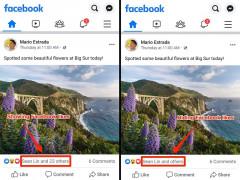 Facebook thử nghiệm tính năng ẩn lượt thích bắt đầu từ tuần này