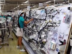 Lo ngại xu hướng sụt giảm nguồn vốn FDI chất lượng