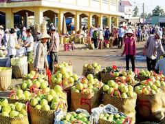 Loại bỏ tư duy xuất khẩu tiểu ngạch