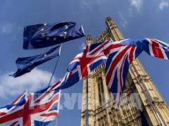 """Doanh nghiệp Anh """"chạy nước rút"""" trước thềm Brexit"""