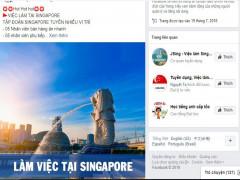 Đi làm việc ở Singapore coi chừng bị lừa