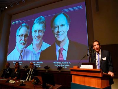 Hy vọng chữa bệnh từ nghiên cứu giành Nobel Y sinh 2019
