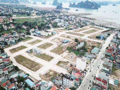 Có nên đầu tư đất nền sau cơn sốt đi qua?