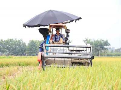 Bộ Tài chính đề xuất miễn thuế sử dụng đất nông nghiệp đến năm 2030