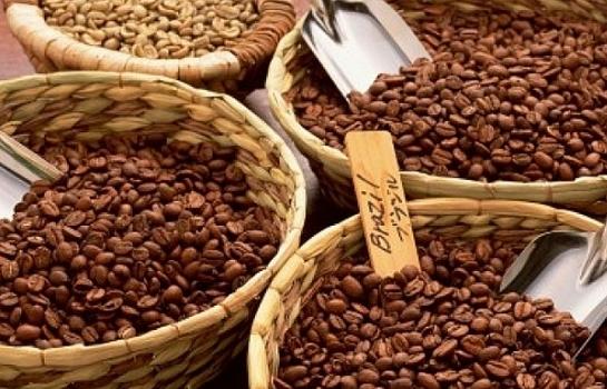 Xuất khẩu cà phê 9 tháng năm 2019 đạt 2,15 tỷ USD