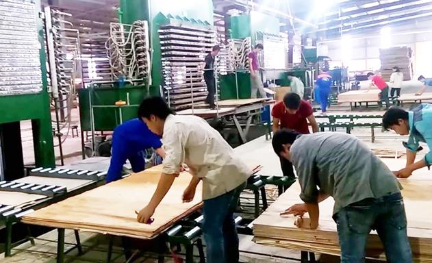 Ẩn họa khi gỗ xuất sang Mỹ tăng đột biến