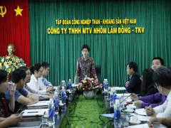 Ủy ban Quản lý vốn Nhà nước làm việc với Công ty Nhôm Lâm Đồng