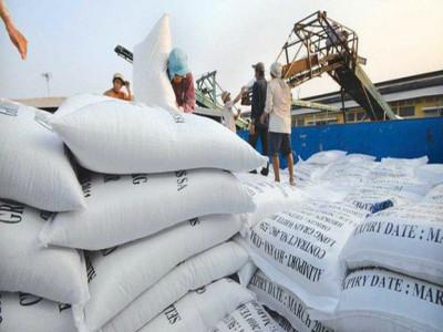 Nỗi buồn gạo Việt