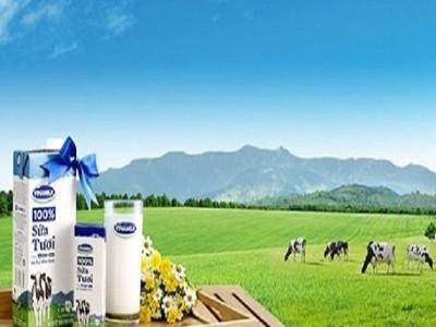 Vinamilk ra thông cáo khẳng định về nguồn nguyên liệu để sản xuất các sản phẩm sữa