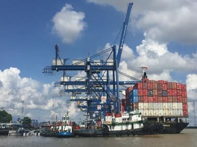 Xuất khẩu tháng cuối năm 2019 diễn biến ra sao?