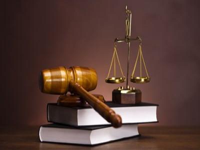 Xử lý nghiêm các doanh nghiệp trốn đóng, gian lận, trục lợi BHXH