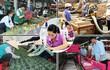 Kinh tế Việt Nam năm 2019 qua những con số