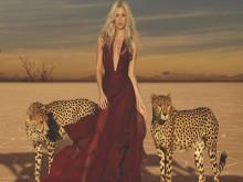 Nữ hoàng nhạc Latin Shakira và những thứ nhiều người ao ước