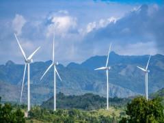 """Bị cắt giảm công suất mức cao, nhà đầu tư điện gió xin được """"đối xử công bằng"""""""
