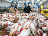 Làm gì để nâng chất lượng hàng Việt?